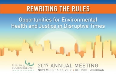 Graphic: Rewriting the Rules:  Opportunities for Environmental Health & Justice in Disruptive Times
